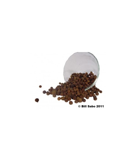 Organic Allspice Flavor Powder (Sugar Free, Calorie Free)