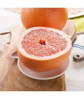 Sante Grapefruit (Florida, 5X Fold) Essential Oil