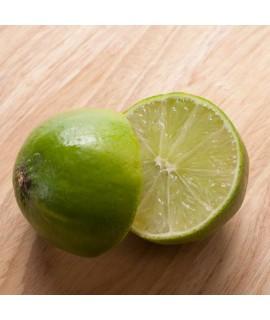 Sante Lime (West Indian Distilled) Essential Oil