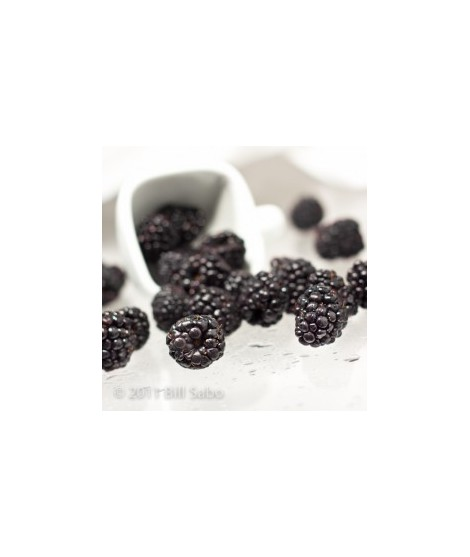 Organic Blackberry Flavor Powder (Sugar Free, Calorie Free)
