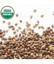 Organic Cardamom Flavor Powder (Sugar Free, Calorie Free)