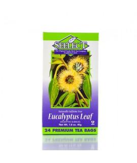 Eucalyptus Leaf Tea 24 Premium Tea Bags