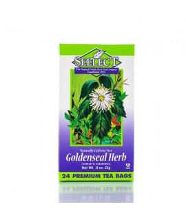Goldenseal Herb Tea 24 Premium Tea Bags