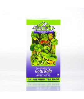 Gotu Kola Tea 24 Premium Tea Bags