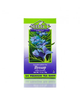 Hyssop Tea 24 Premium Tea Bags
