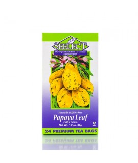 Papaya Leaf Tea 24 Premium Tea Bags