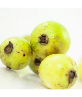 Organic Guava Flavor Cotton Candy Base