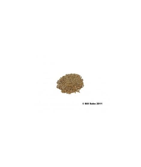 Organic Cumin Flavor Powder (Sugar Free, Calorie Free)