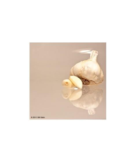 Organic Garlic Flavor Powder (Sugar Free, Calorie Free)