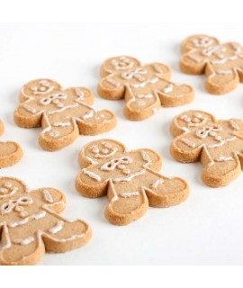 Gingerbread Flavor Powder