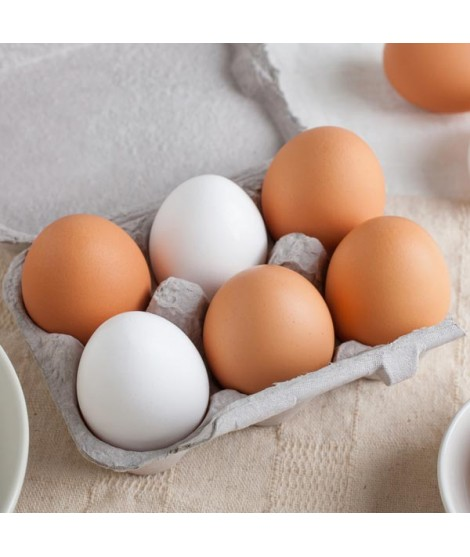 Egg Shade A Food Color