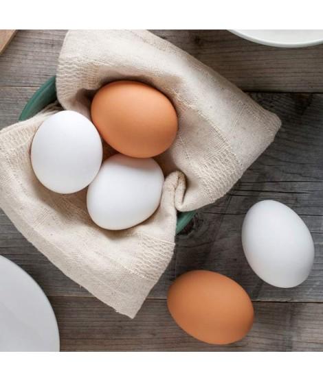 Egg Shade B Food Color