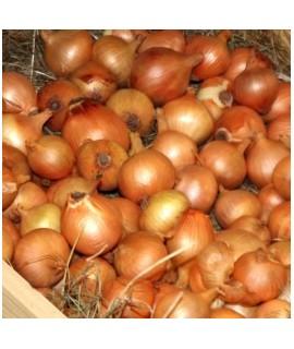Organic Onion Flavor Powder (Sugar Free, Calorie Free)
