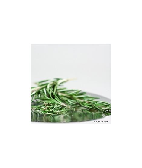 Organic Rosemary Flavor Powder (Sugar Free, Calorie Free)