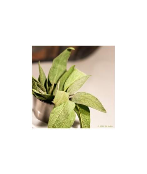 Organic Sage Flavor Powder (Sugar Free, Calorie Free)