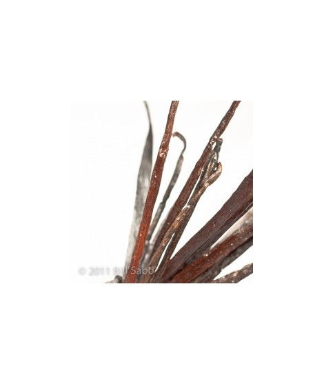 Organic Vanilla Flavor Powder (Sugar Free, Calorie Free)