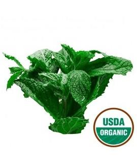 Organic Wintergreen Flavor Powder (Sugar Free, Calorie Free)